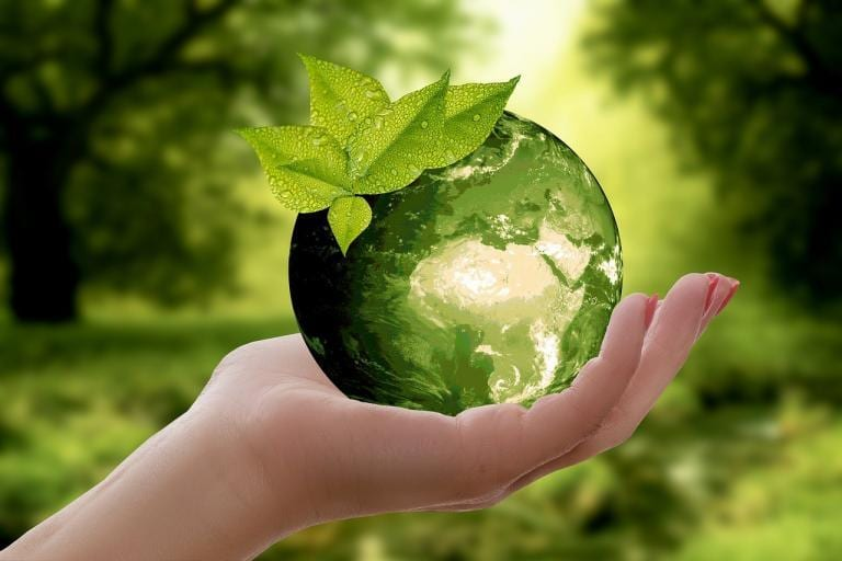 A New Earth Summary + Review By Eckhart Tolle